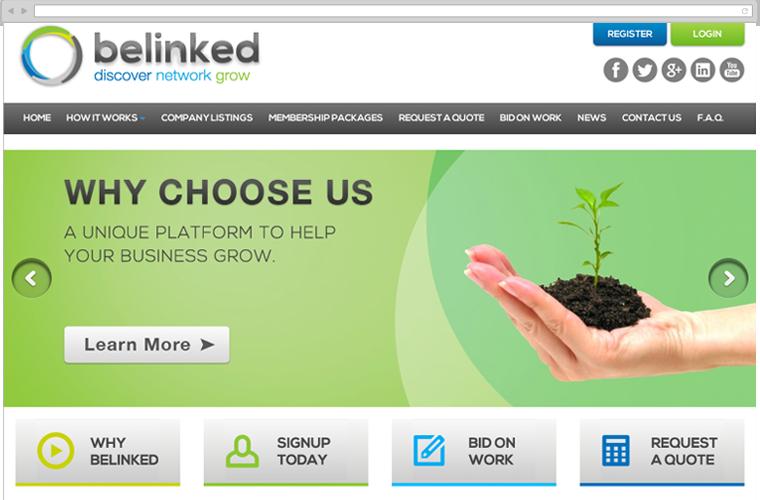 belinked website design